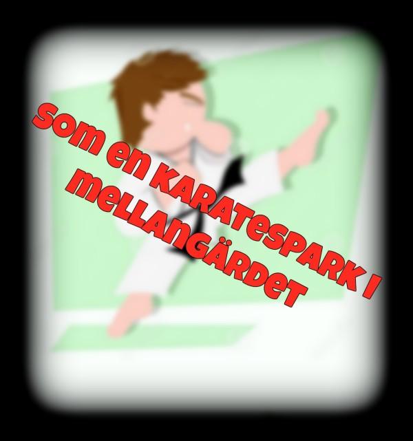 roliga-små-ungar-gör-någon-karatespark-30999553